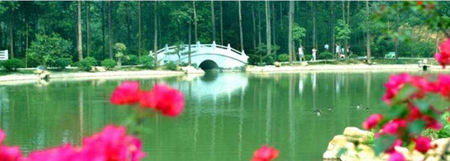 板岭凝芳(东莞植物园,水濂山森林公园及周边景观)