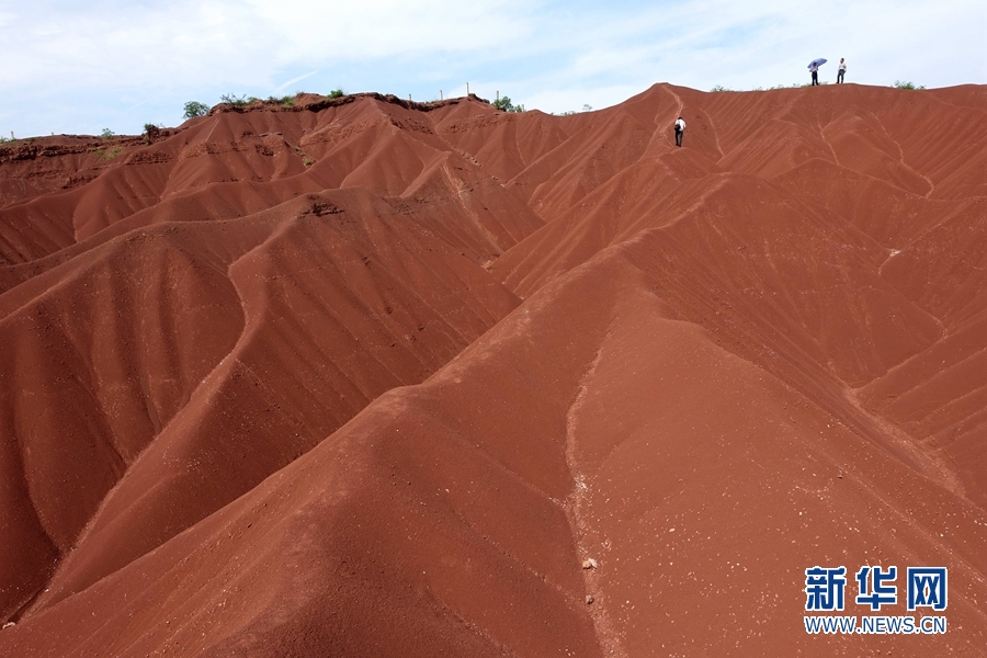 苍溪红心猕猴桃_四川盆地被称为紫色盆地是由于_紫色盆地指的是哪个盆地 - 电影 ...