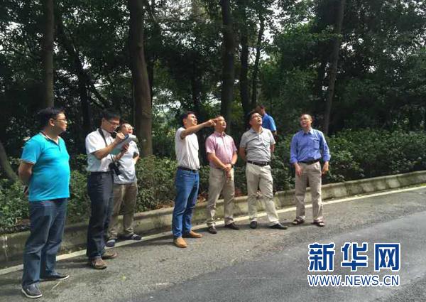 防台风海马 广东西樵提前开放295个庇护场所