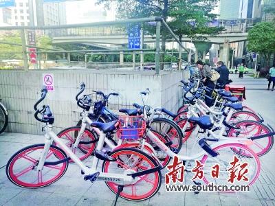 摩拜单车广州负责人赵剑平告诉记者