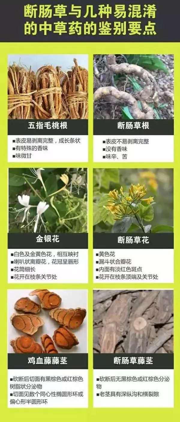 广东省市场监督管理局发布消费提醒:谨防误食断
