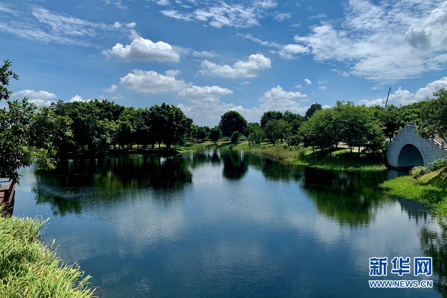 百事娱乐:绿色发展看海珠:海珠湿地三期开园