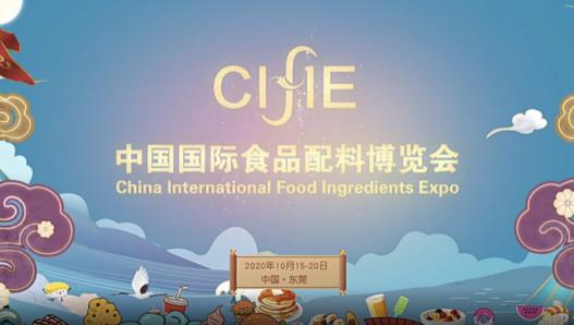 百事注册:第五届中国国际食