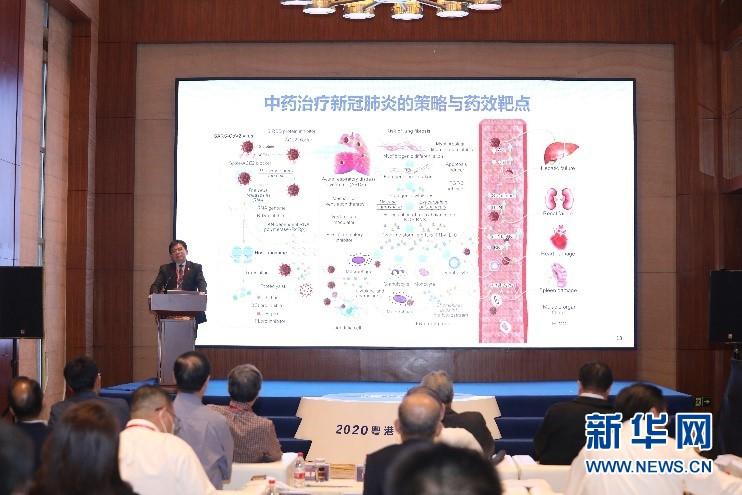 """顺达注册:探讨新药创制发展机遇""""湾区科技对话""""在东莞举行"""