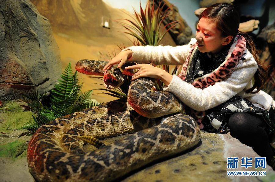 广州长隆野生动物世界的机器蛇馆从美国引进