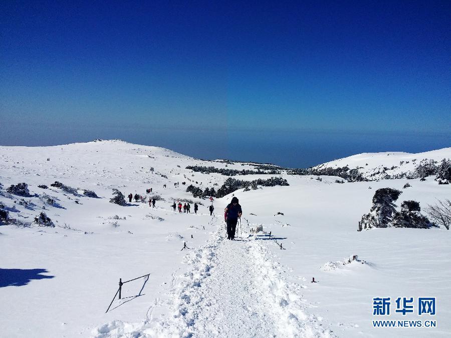 位于韩国济州岛的汉拿山海拔1950米,是韩国最高峰,一年四季风景如画