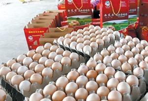 """""""五一""""節後再降價 雞蛋比包子還便宜"""