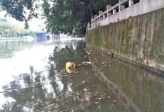 """廣州公布6月35條河涌污染""""貢獻""""排名"""