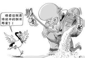 """廣東話百科:倒米(千萬別做""""倒米壽星"""",為什麼?)"""
