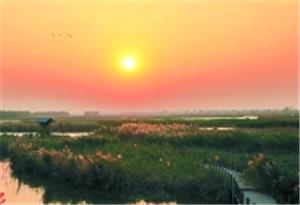 廣州四年再添10個濕地公園