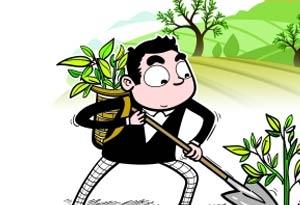 廣東九成沙化土地得到初步治理 人工造林66萬畝