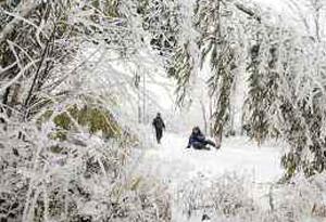 105市縣(區)發布寒冷預警 明晨粵北最低氣溫-1℃