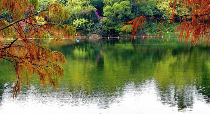 廣州冬日麓湖色彩