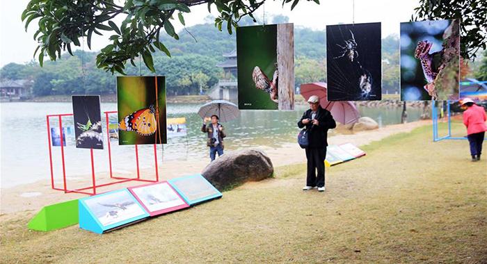 東莞:生態公園變影展場地 城市叢書展生態之美
