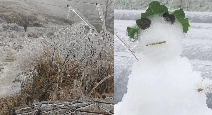 韶關:受寒潮低溫冷雨襲擊 乳源樂昌等地均有挂冰