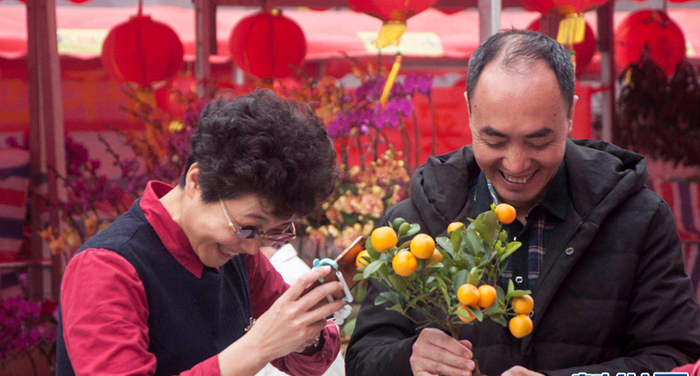 【新春走基層】年味起 廣州番禺迎春花市開門迎客