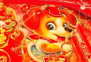 【網絡媒體走轉改】喜慶燈籠挂 街頭年味濃