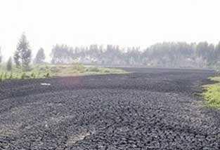廣州一公司涉嫌非法傾倒污泥被生態環境部通報