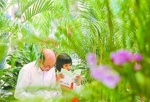 珠三角國家森林城市群有望年內建成