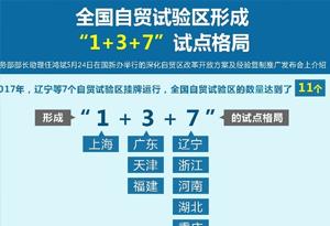 """全国自贸试验区形成""""1+3+7""""试点格局"""