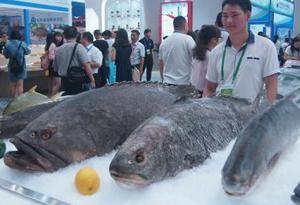 2018中国水博会在广东湛江举行 逾3000家国内外客商参会