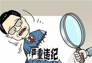 """南方醫科大學副校長胡煒嚴重違紀違法被""""雙開"""""""