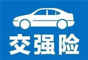 廣州推出交強險電子保單 上路未帶標志不再處罰