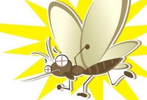 秋蚊子戰鬥力爆表!咬一口過敏人群甚至會休克