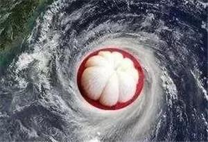 台风v台风超强表情全力省防总防风维持Ⅲ级应刺激头图片山竹蘑菇包图片