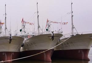 穗新增3艘遠洋漁船 將年産千噸太平洋深海魚