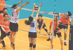 深圳竹林杯隊獲得全國業余排球精英聯盟賽(廣東賽區)冠軍