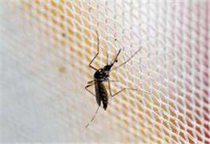 海關檢出今年國內首例輸入性寨卡病毒病病例