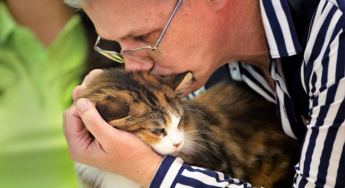 廣州舉辦WCF國際名貓賽 名貓齊聚亮相