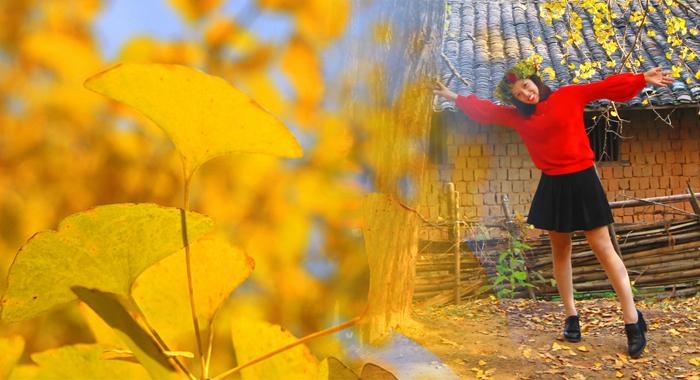 銀杏已黃,無人機帶你相約這金色童話