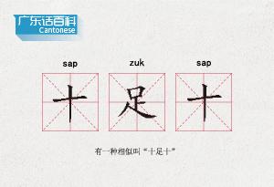 """廣東話百科:十足十(有一種相似叫""""十足十"""")"""