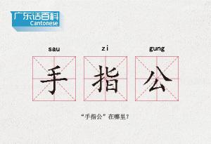 """廣東話百科:手指公(""""手指公""""在哪裏?)"""