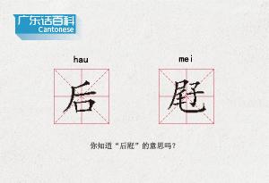 """廣東話百科:後屘(你知道""""後屘""""的意思嗎?)"""
