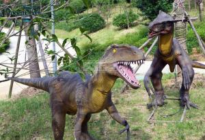 科研人員找到恐龍演化成鳥的重要分子學特徵