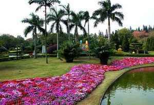 廣州花園核心區建設今年將啟動