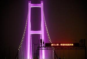 視頻丨虎門二橋項目全線亮燈 預計清明節前通車