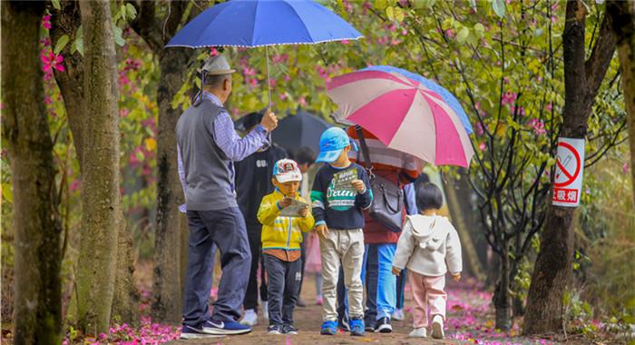 人間四月清明天 踏青賞花正當季