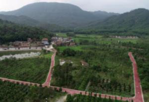 增城:用綠道帶動全域旅遊