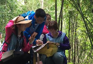 廣東:假期次日 周邊休閒遊和短途遊受青睞