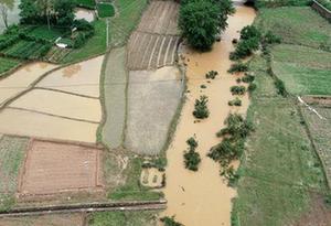 南方多地持續強降雨 駐地武警官兵緊急抗洪搶險