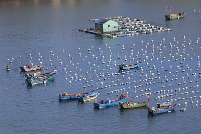 海洋經濟成為廣東經濟發展新增長極
