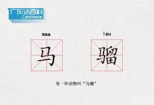 """廣東話百科:馬騮(有一種動物叫""""馬騮"""")"""