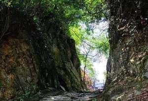 廣東已保護修復古驛道近千公裏