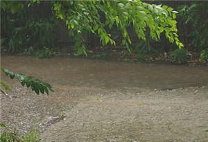 廣東:未來三天 降雨明顯