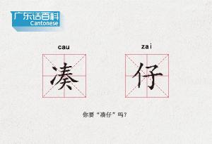 """廣東話百科:湊仔(你要""""湊仔""""嗎?)"""
