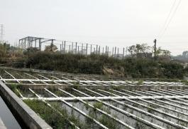 江門擬建1449個農村生活污水處理設施